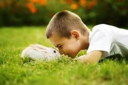L'élevage de lapin vous tente ?