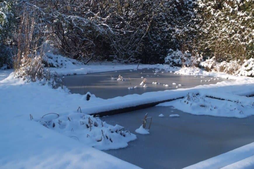 Pièces d'eau au jardin en hiver