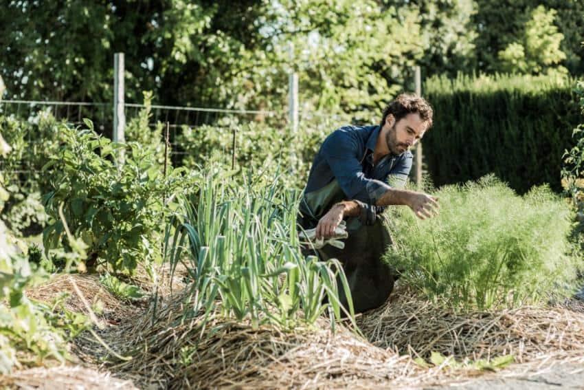 Qu est ce que la permaculture - Qu est ce que la permaculture ...
