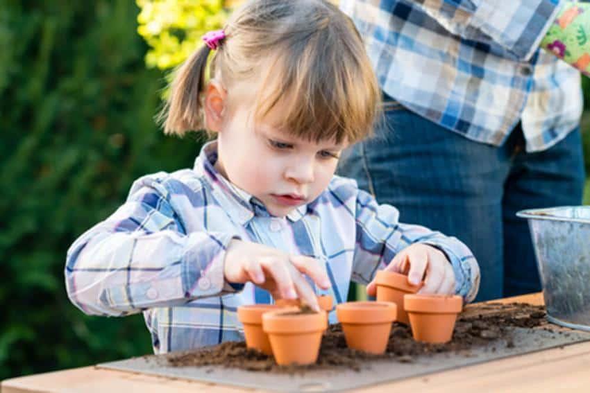 Quelles sont les fleurs les plus faciles à cultiver par les enfants?
