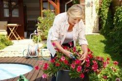 Jardinières printemps-été : la clé du succès !