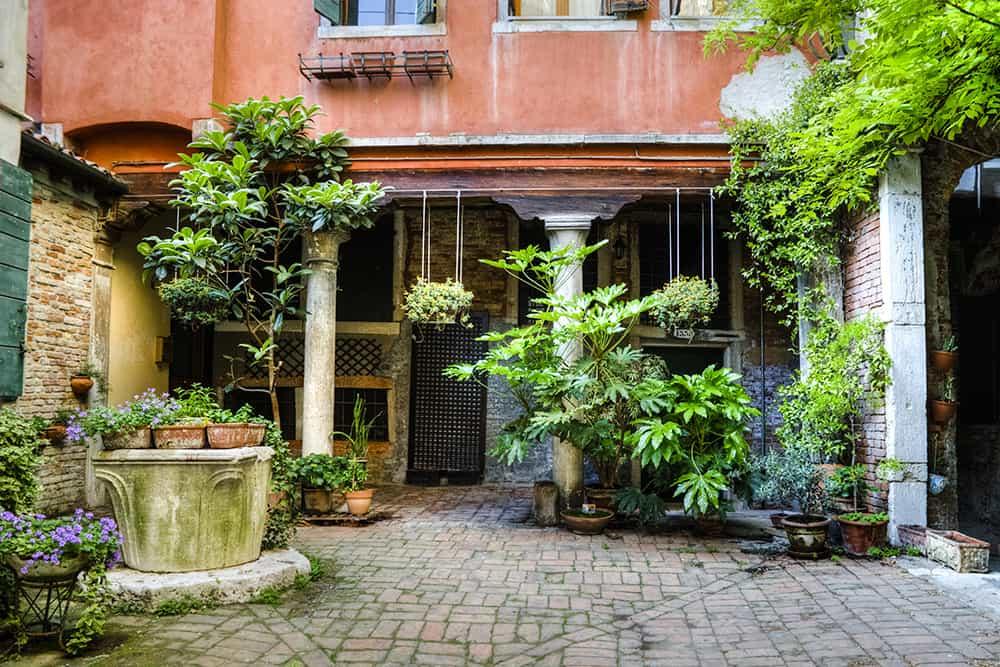Jardin cour ou la cour jardin l 39 esprit jardin for Jardin cour