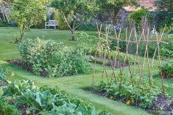 Jardinage : quelques règles de bonne pratique
