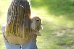 L'adoption d'un lapin : toute une aventure !