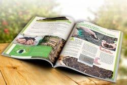 Le compostage à la portée de tous