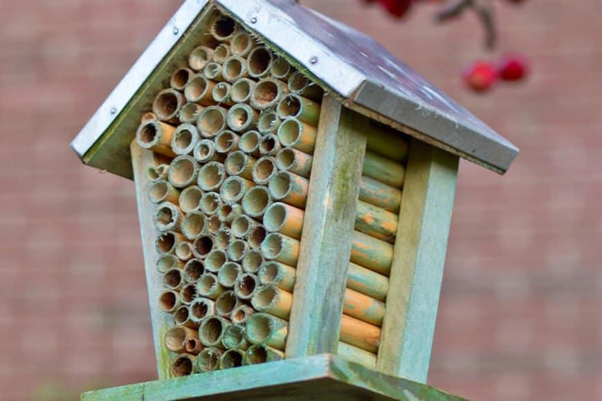 Pourquoi aménager des refuges à insectes?