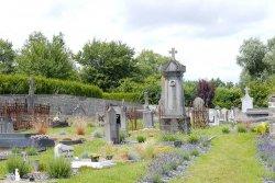 Silence, ça pousse… aussi dans les cimetières!