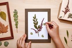 DIY : tableau végétal