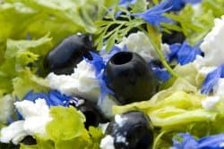 Salade fraicheur à la fleur de bleuet