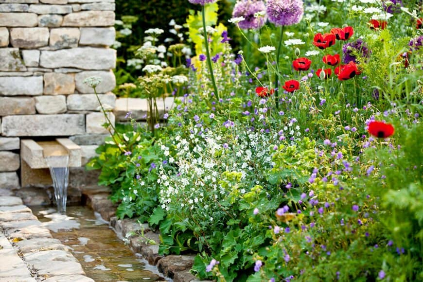 Pour favoriser la biodiversité : semez et plantez « local » !