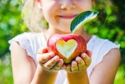 5 collations saines pour vos enfants