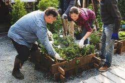 Passionné d'horticulture ? Devenez membre d'un cercle !
