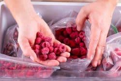 Comment congeler les fruits d'été?