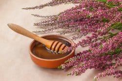 Le miel de bruyère